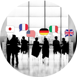 The photo shows the silhouettes of people of different nationalities. Above the heads are the respective flags. It is about : cultural misunderstanding vs. understanding the role of unique language in business